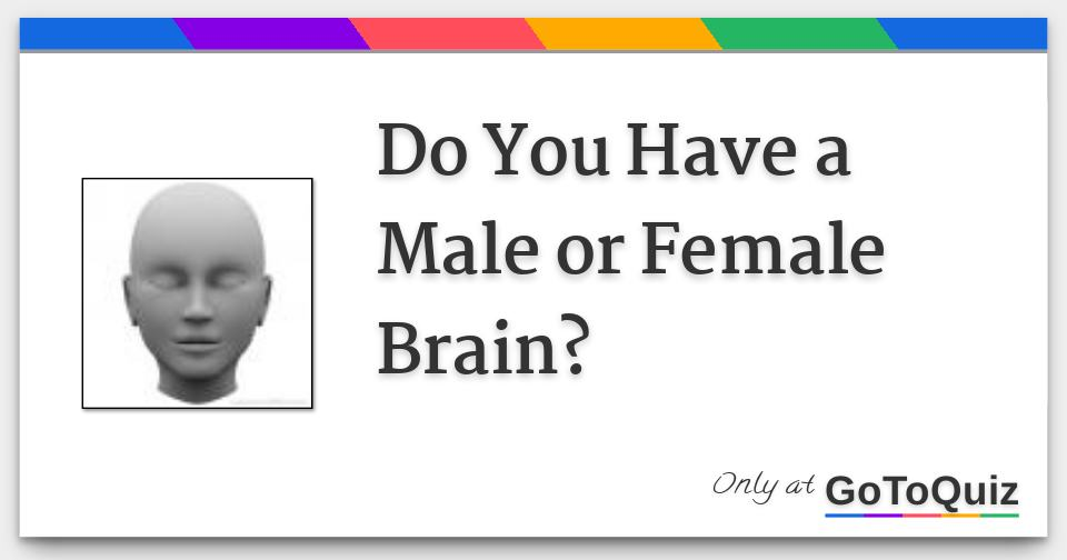 Do You Have a Male or Female Brain?