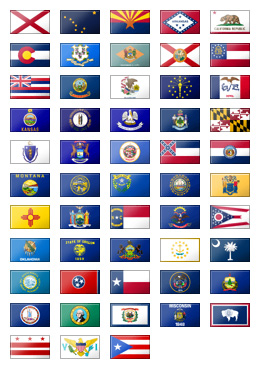 state flags sample